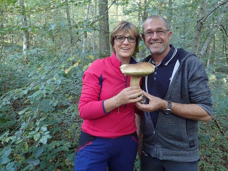 les meilleurs cèpes de France en Thiérache chambres d'hôtes Le Bocage Aisne entre La Capelle et Vervins 02 Picardie